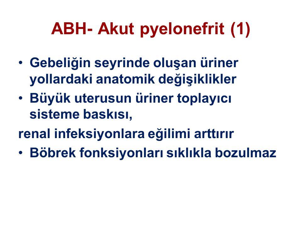 ABH- Akut pyelonefrit (1)