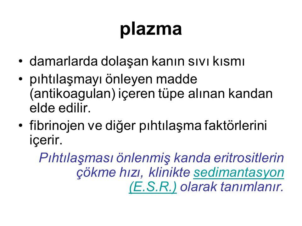 plazma damarlarda dolaşan kanın sıvı kısmı