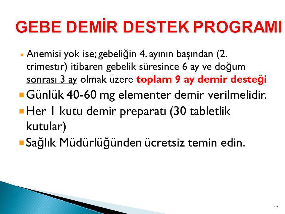 GEBE DEMİR DESTEK PROGRAMI