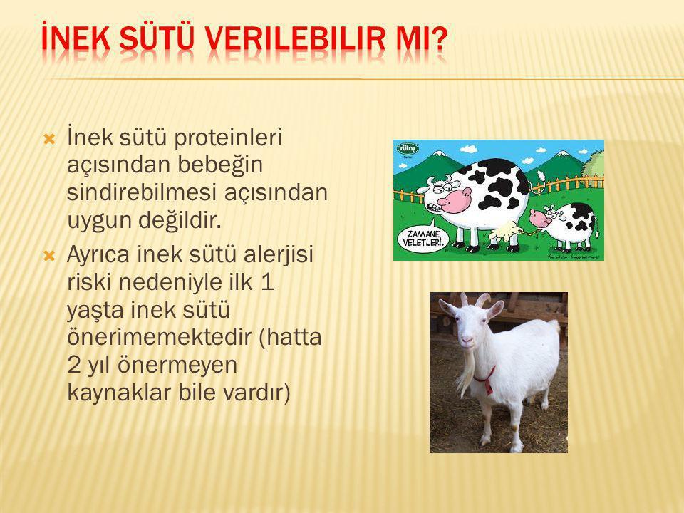İnek sütü verilebilir mi