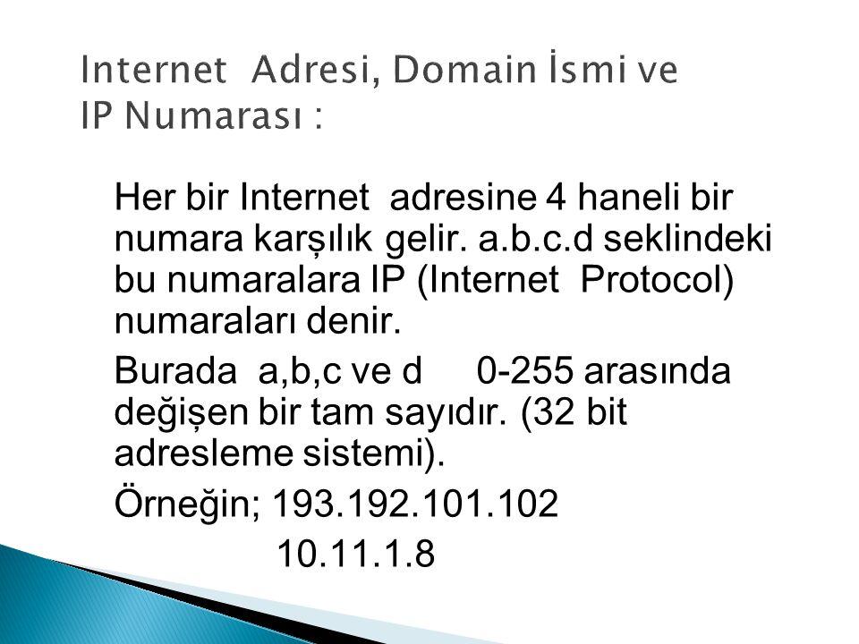 Internet Adresi, Domain İsmi ve IP Numarası :