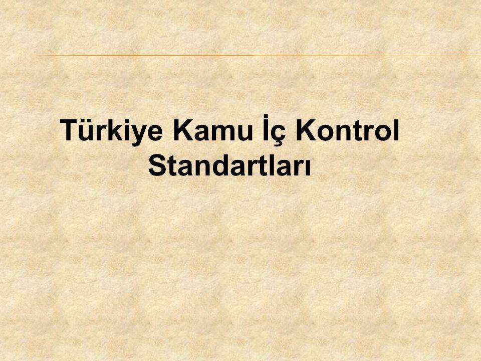 Türkiye Kamu İç Kontrol Standartları