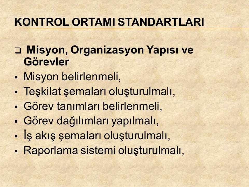 KONTROL ORTAMI STANDARTLARI