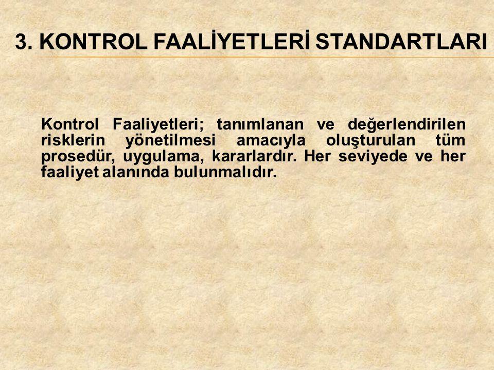 3. KONTROL FAALİYETLERİ STANDARTLARI