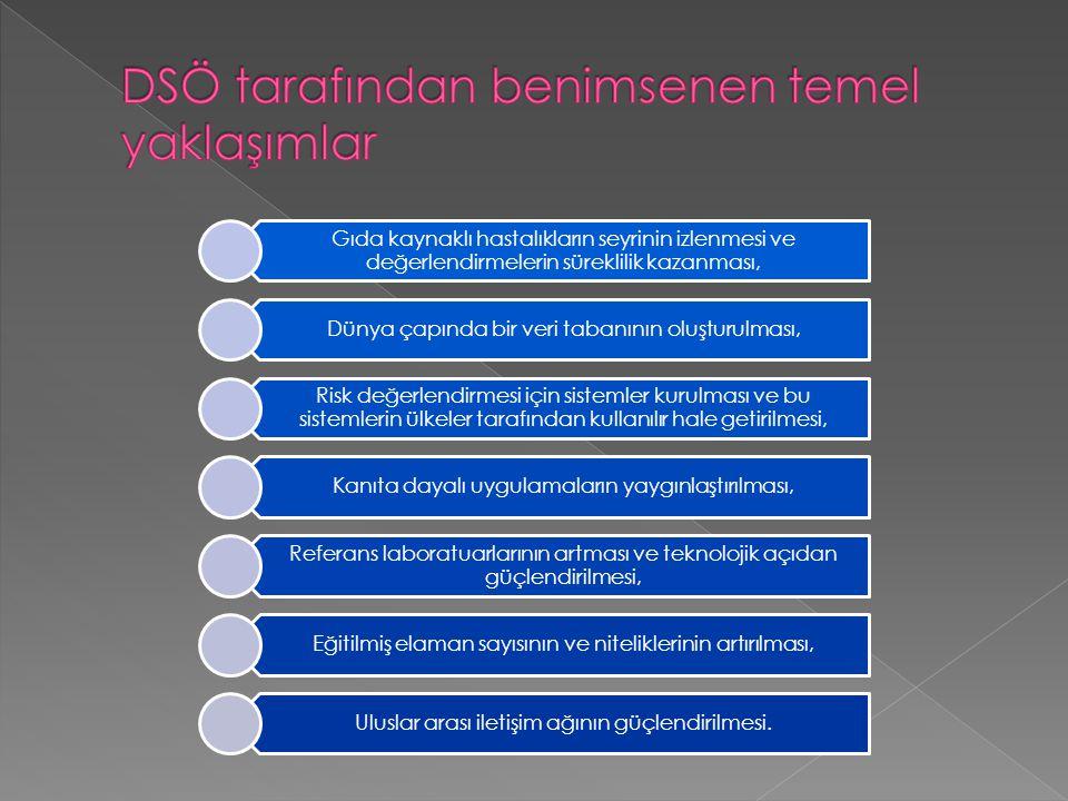 DSÖ tarafından benimsenen temel yaklaşımlar