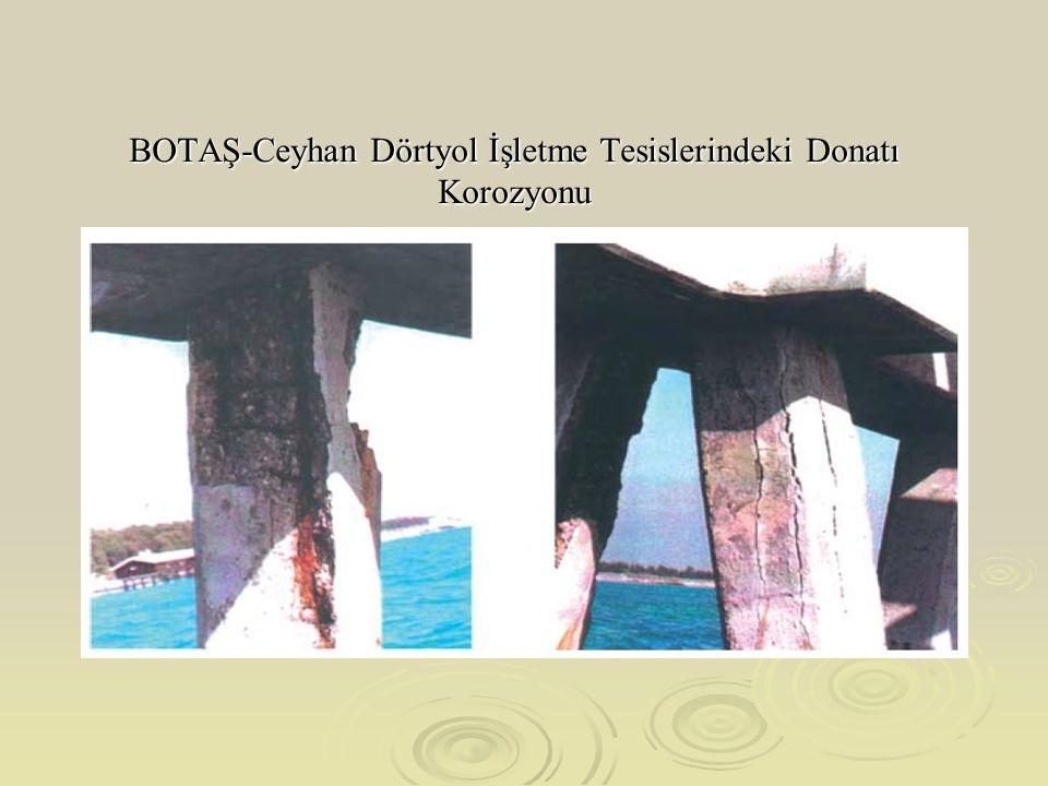 BOTAŞ-Ceyhan Dörtyol İşletme Tesislerindeki Donatı Korozyonu