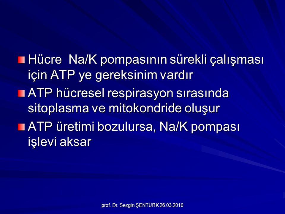 Hücre Na/K pompasının sürekli çalışması için ATP ye gereksinim vardır