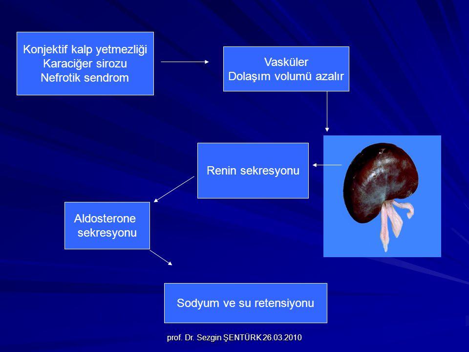Konjektif kalp yetmezliği Karaciğer sirozu Nefrotik sendrom Vasküler