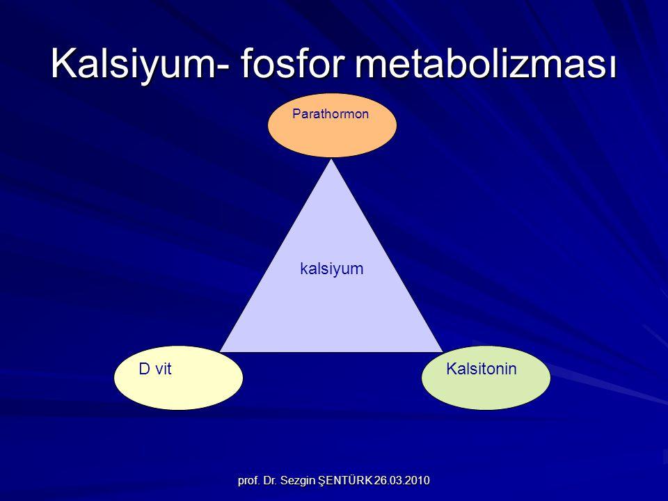 Kalsiyum- fosfor metabolizması