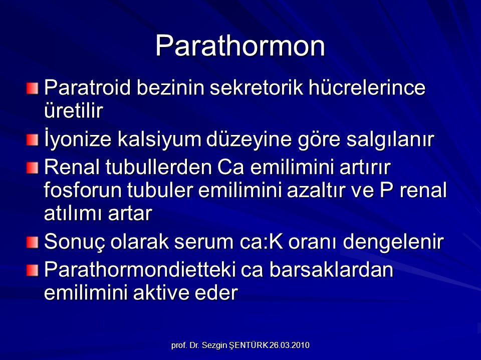 Parathormon Paratroid bezinin sekretorik hücrelerince üretilir