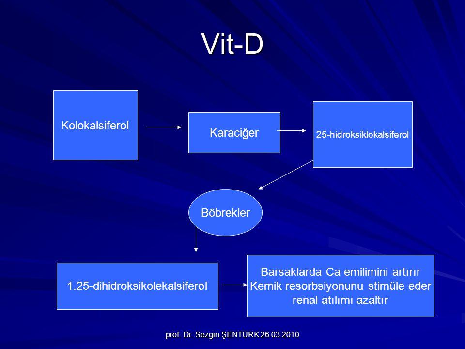Vit-D Kolokalsiferol Karaciğer Böbrekler