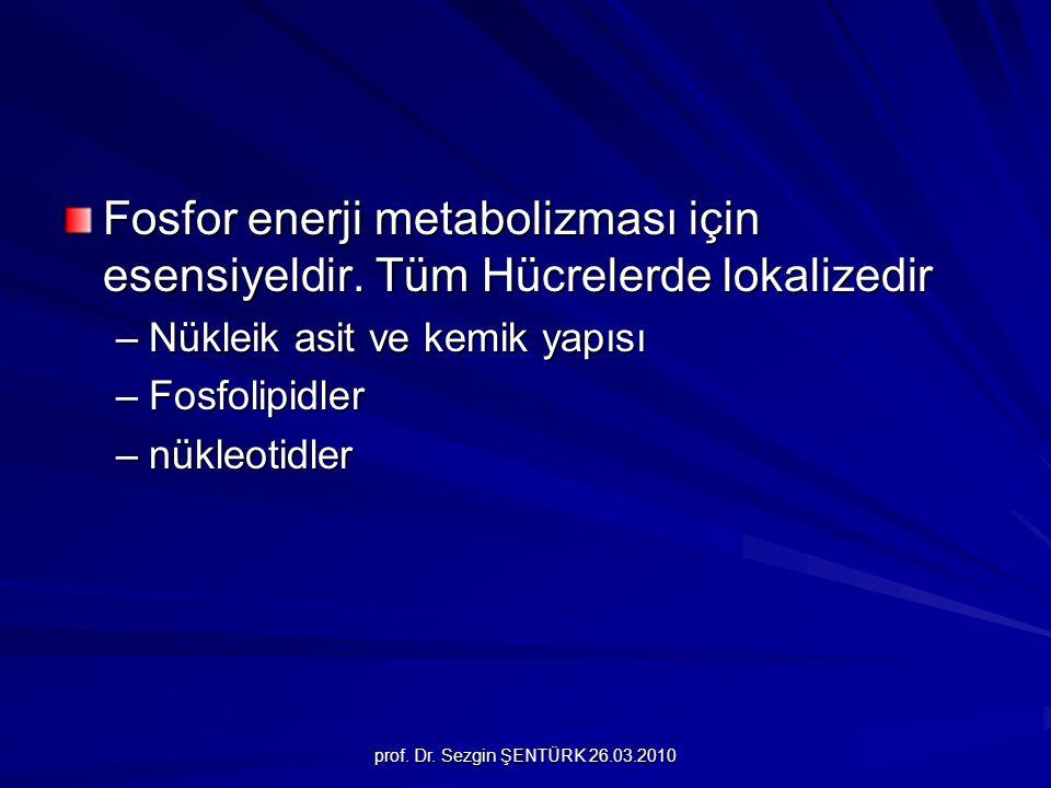 Fosfor enerji metabolizması için esensiyeldir