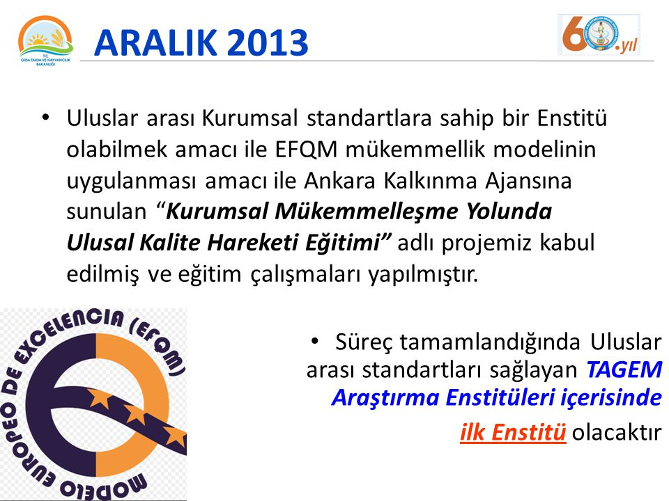 ARALIK 2013