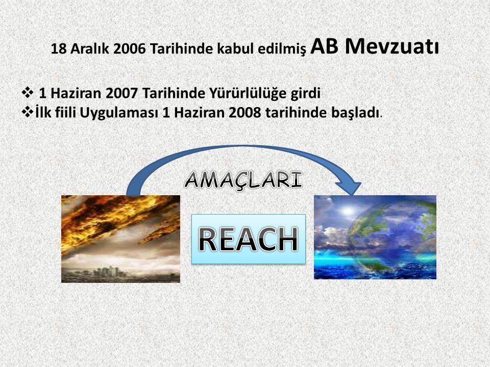 18 Aralık 2006 Tarihinde kabul edilmiş AB Mevzuatı
