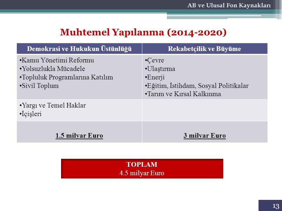 Muhtemel Yapılanma (2014-2020)