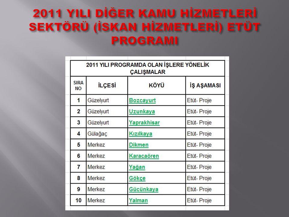 2011 YILI DİĞER KAMU HİZMETLERİ SEKTÖRÜ (İSKAN HİZMETLERİ) ETÜT PROGRAMI