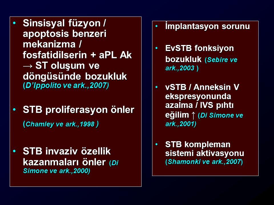 STB proliferasyon önler (Chamley ve ark.,1998 )