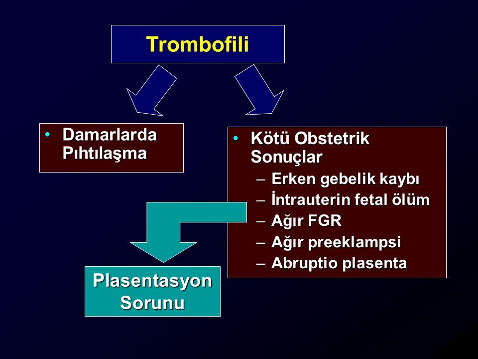 Trombofili Plasentasyon Sorunu Damarlarda Pıhtılaşma