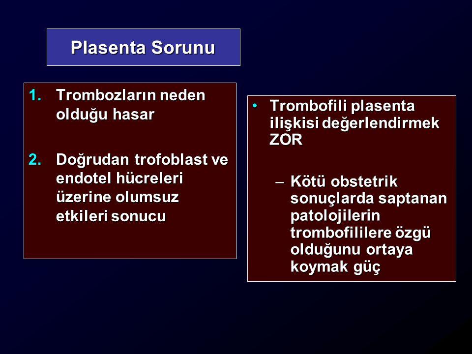Plasenta Sorunu Trombozların neden olduğu hasar
