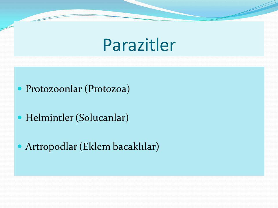 Parazitler Protozoonlar (Protozoa) Helmintler (Solucanlar)