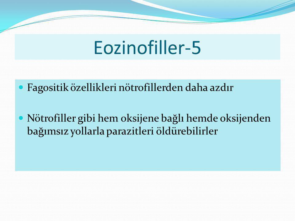 Eozinofiller-5 Fagositik özellikleri nötrofillerden daha azdır