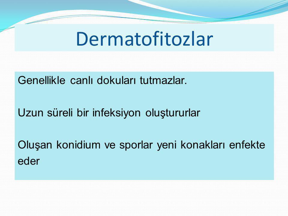 Dermatofitozlar Genellikle canlı dokuları tutmazlar.