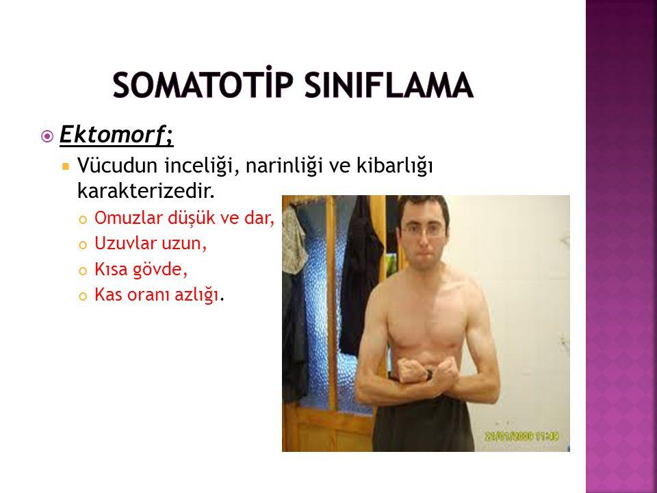 SOMATOTİP SINIFLAMA Ektomorf;