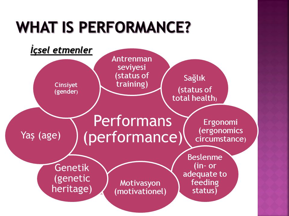 What is Performance İçsel etmenler