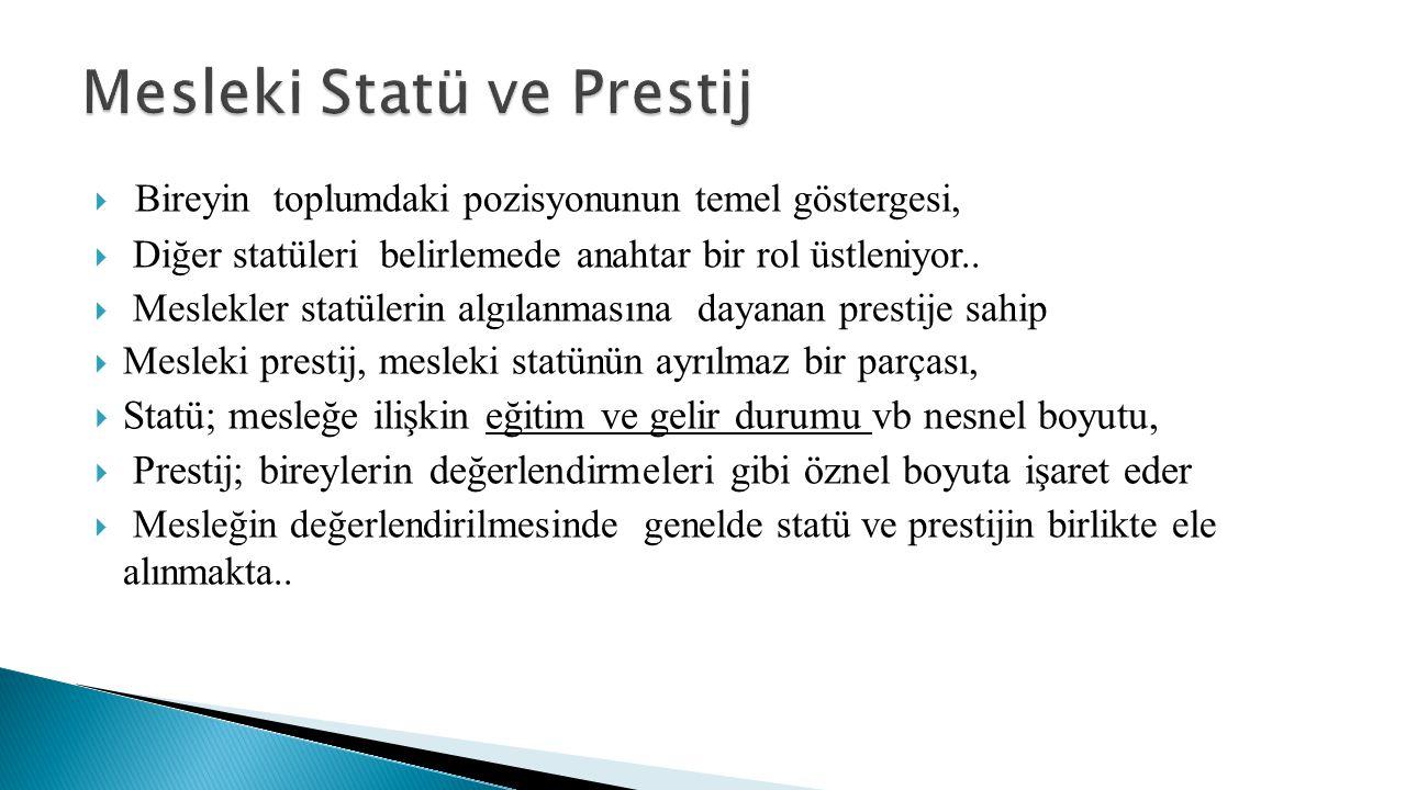Mesleki Statü ve Prestij