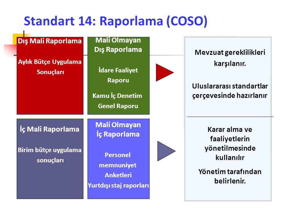 Standart 14: Raporlama (COSO)
