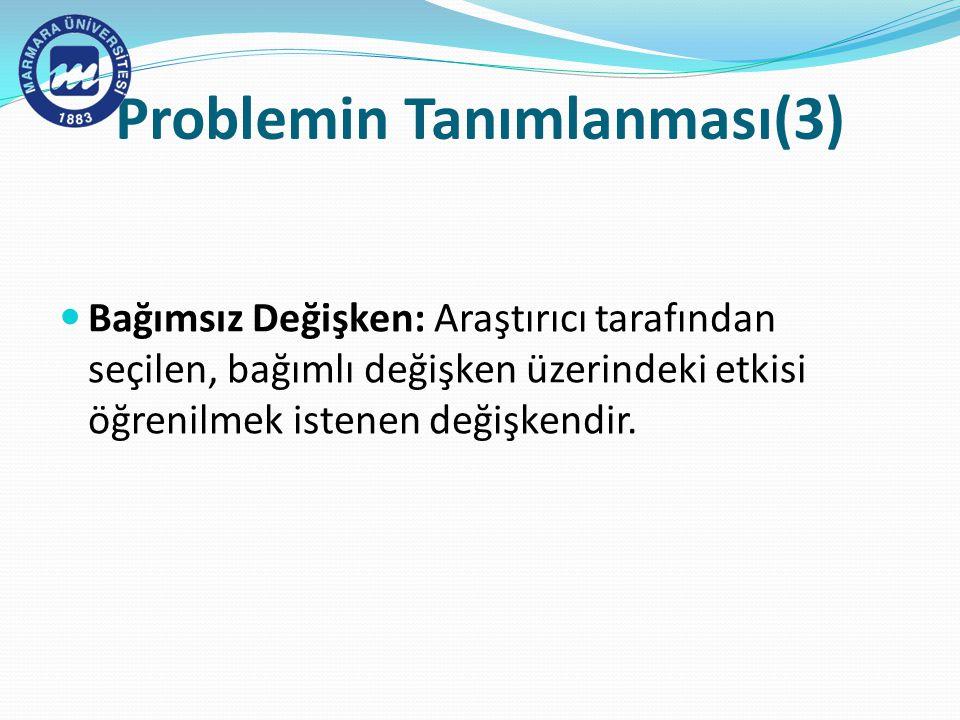 Problemin Tanımlanması(3)