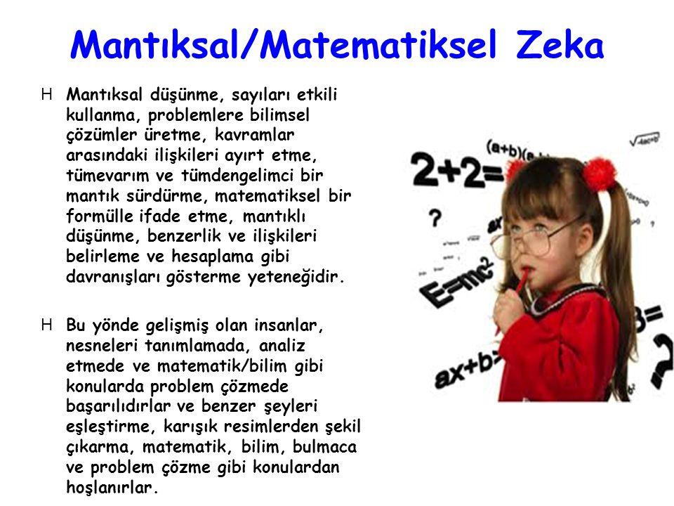 Mantıksal/Matematiksel Zeka
