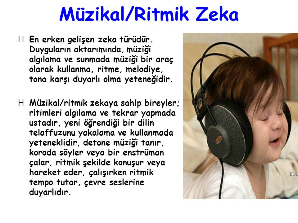 Müzikal/Ritmik Zeka