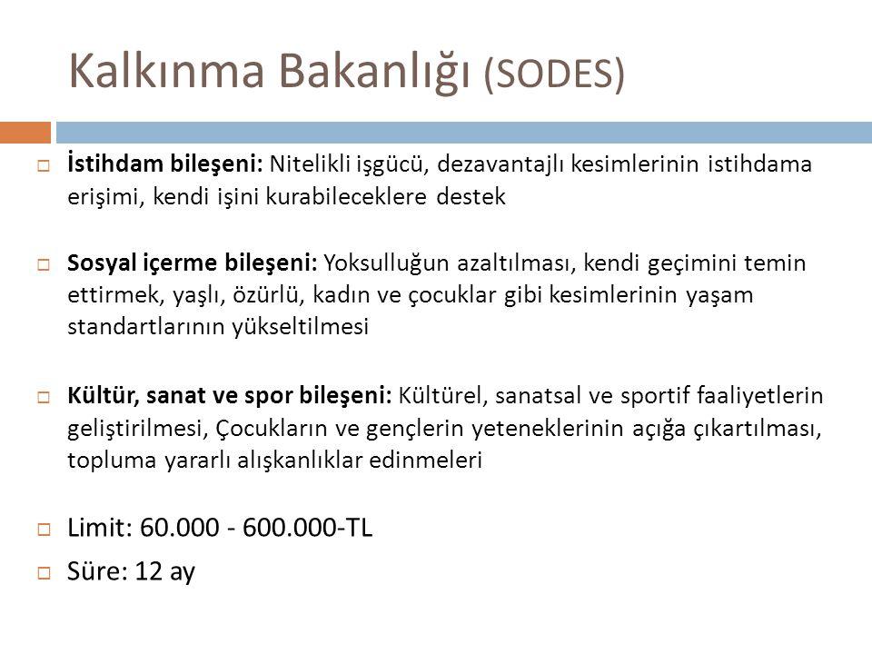 Kalkınma Bakanlığı (SODES)