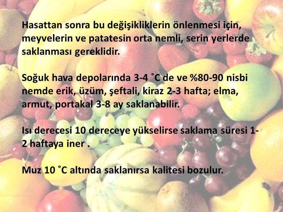 Hasattan sonra bu değişikliklerin önlenmesi için, meyvelerin ve patatesin orta nemli, serin yerlerde saklanması gereklidir.