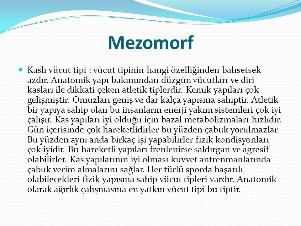 Mezomorf