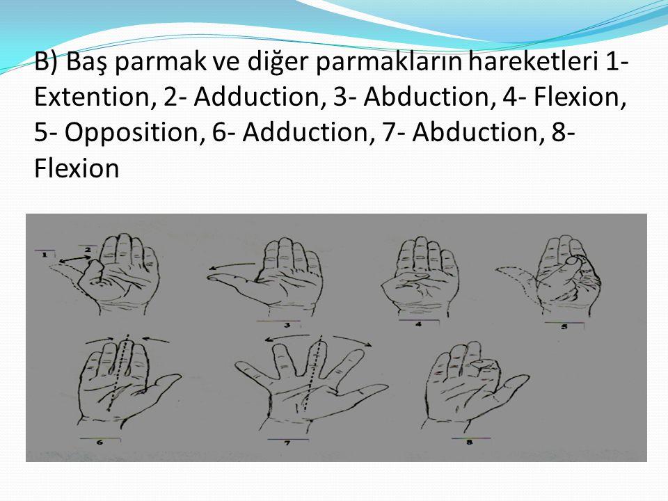 B) Baş parmak ve diğer parmakların hareketleri 1- Extention, 2- Adduction, 3- Abduction, 4- Flexion, 5- Opposition, 6- Adduction, 7- Abduction, 8- Flexion