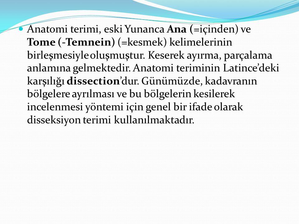 Anatomi terimi, eski Yunanca Ana (=içinden) ve Tome (-Temnein) (=kesmek) kelimelerinin birleşmesiyle oluşmuştur.