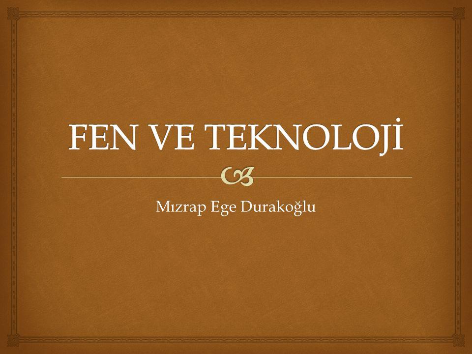 FEN VE TEKNOLOJİ Mızrap Ege Durakoğlu