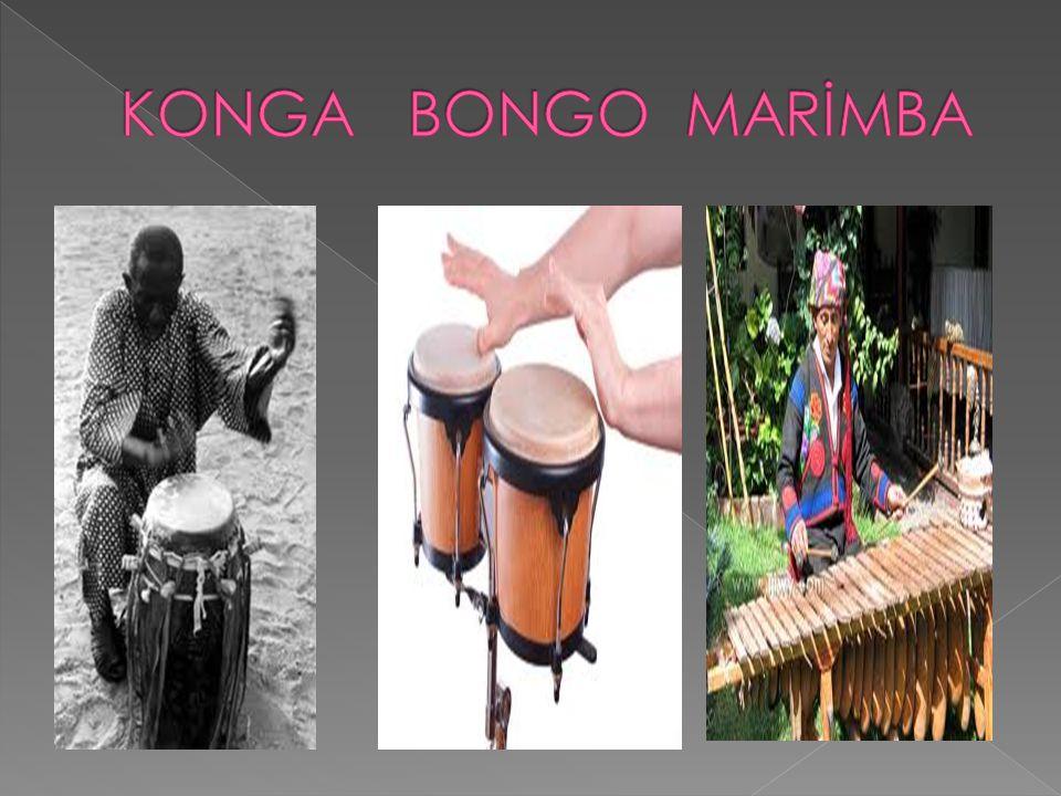 KONGA BONGO MARİMBA