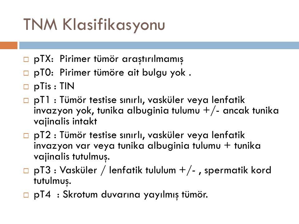 TNM Klasifikasyonu pTX: Pirimer tümör araştırılmamış