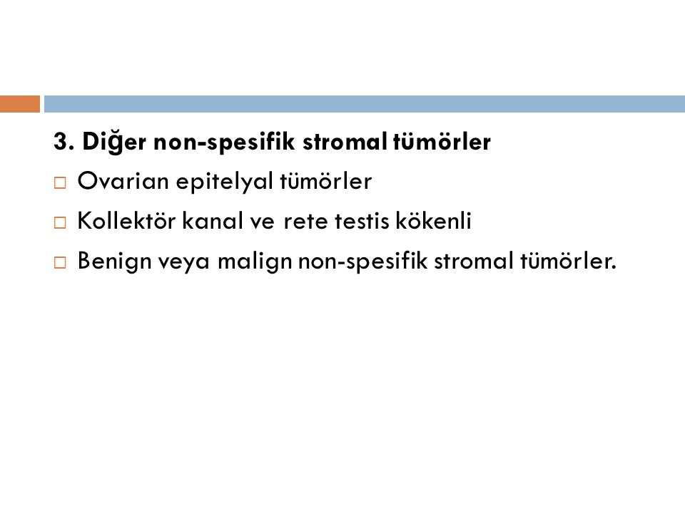 3. Diğer non-spesifik stromal tümörler