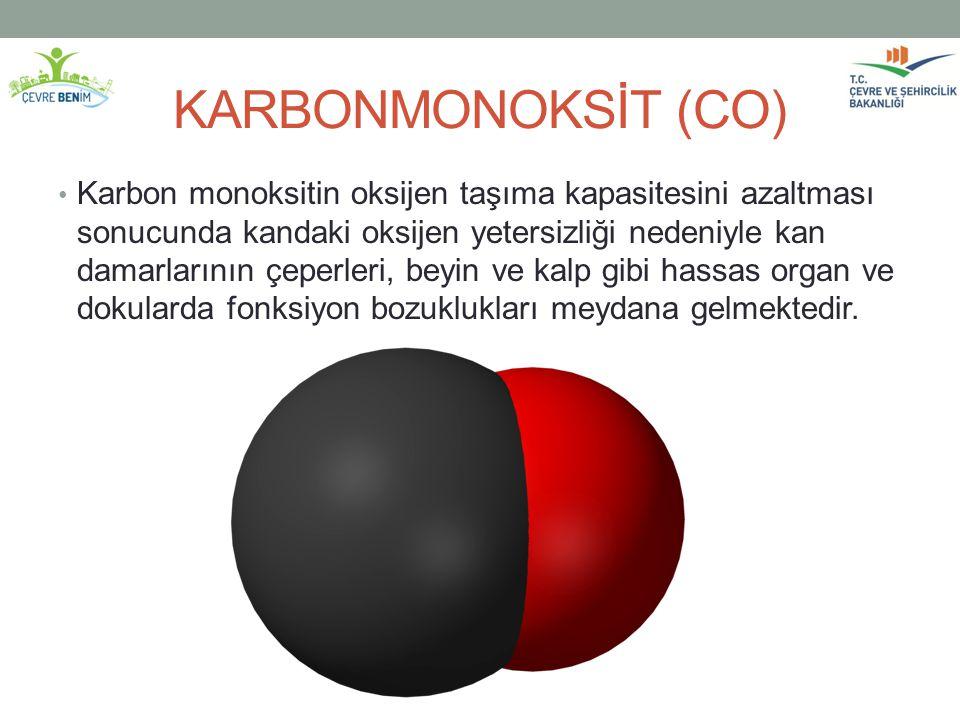 KARBONMONOKSİT (CO)