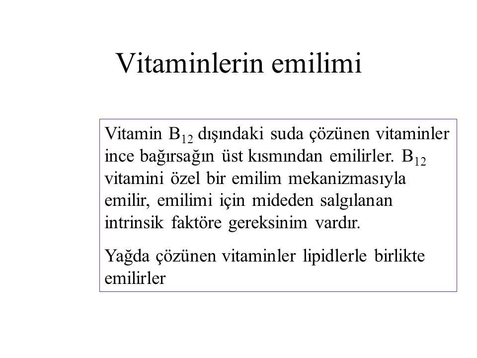 Vitaminlerin emilimi
