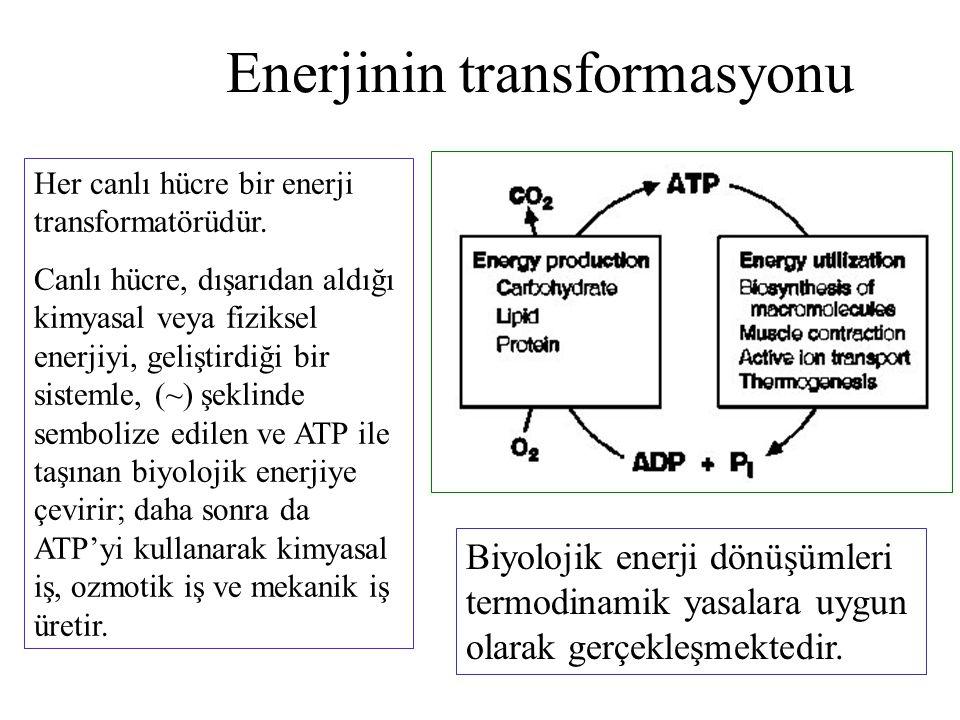 Enerjinin transformasyonu
