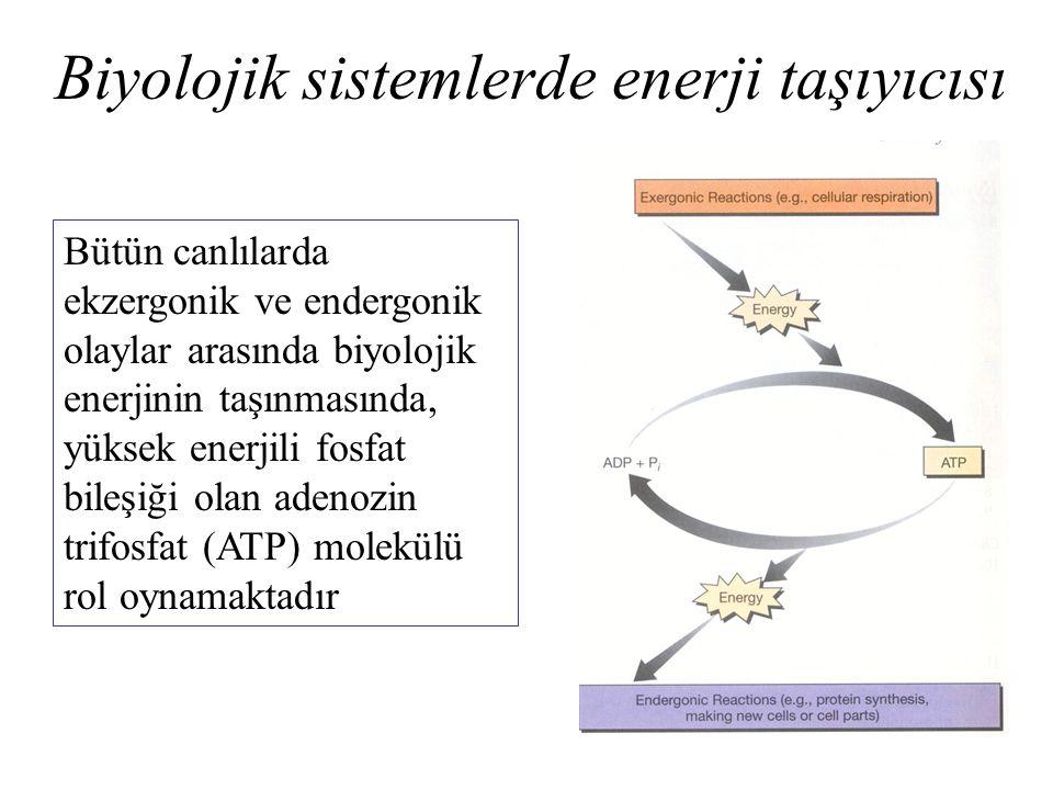 Biyolojik sistemlerde enerji taşıyıcısı