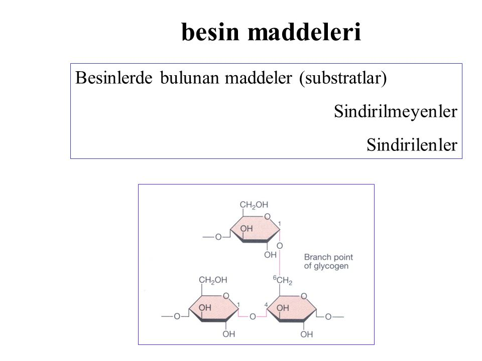 besin maddeleri Besinlerde bulunan maddeler (substratlar)