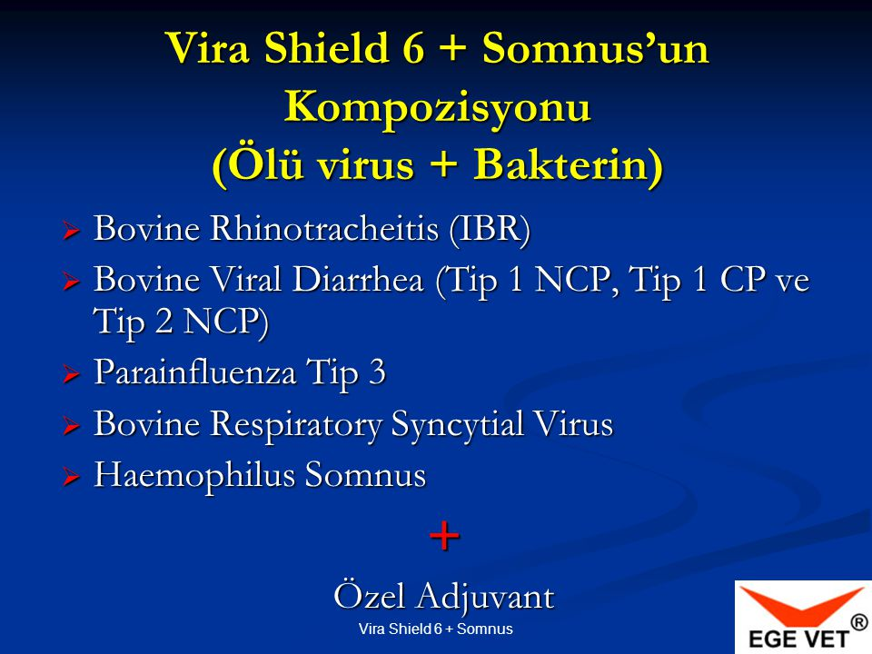Vira Shield 6 + Somnus'un Kompozisyonu (Ölü virus + Bakterin)