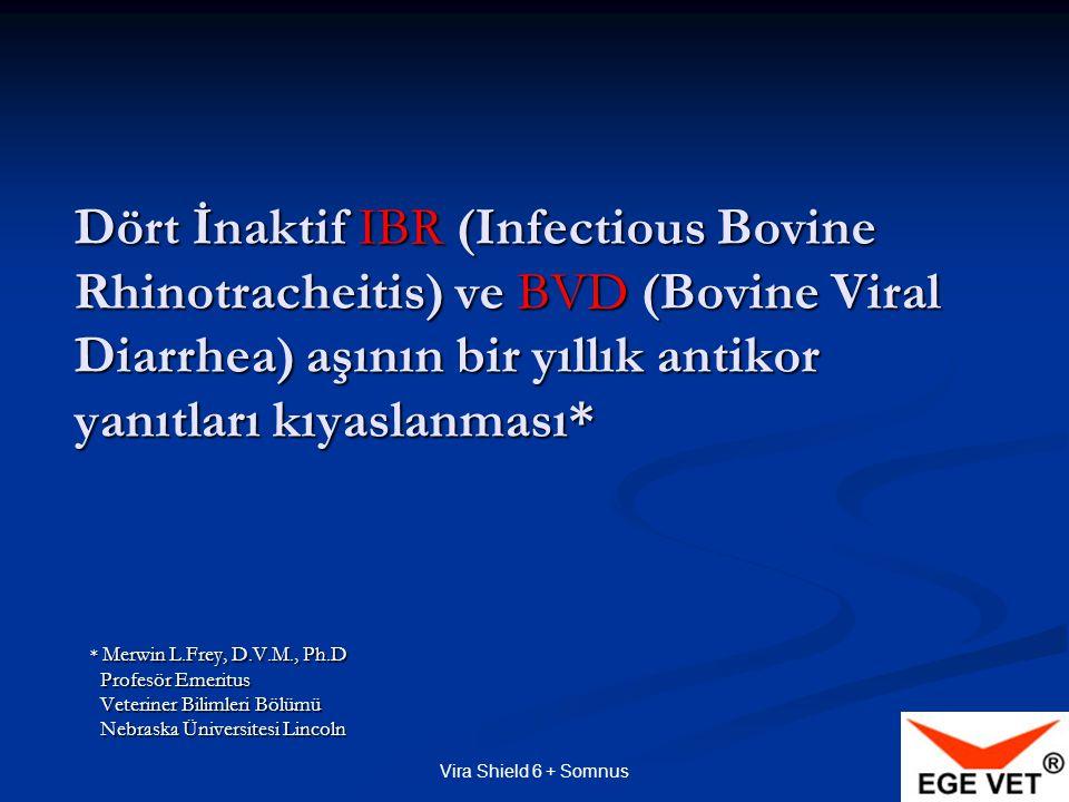 Dört İnaktif IBR (Infectious Bovine Rhinotracheitis) ve BVD (Bovine Viral Diarrhea) aşının bir yıllık antikor yanıtları kıyaslanması*