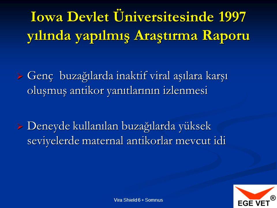 Iowa Devlet Üniversitesinde 1997 yılında yapılmış Araştırma Raporu